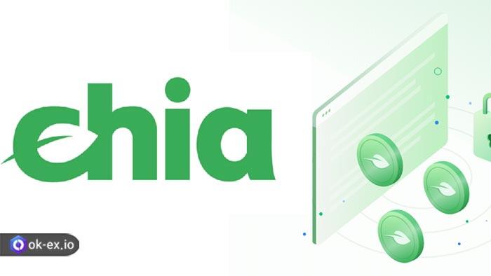 رمز ارز Chia چیست؟